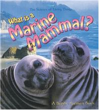 What is a Marine Mammal? - PB