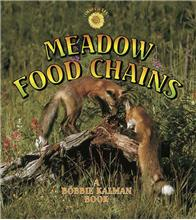 Meadow Food Chains-ebook