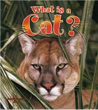 What is a Cat? - HC